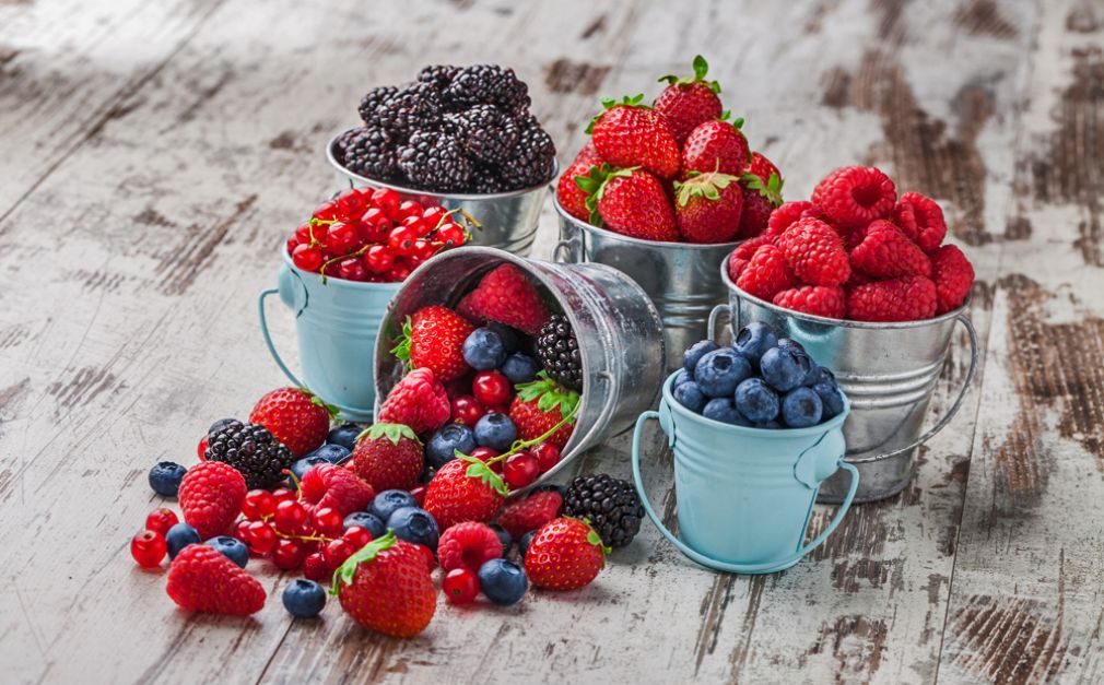 Chilena Hortifrut exportará berries desde Colombia